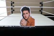 Niall Horan Sticker/Decal V4(1D, One Direction, Niall Horan, Nice To Meet Ya)
