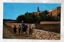 M'ZAB (ALGERIE) ENFANTS & ANE monté , VILLAS de BOU-NOURA en 1967