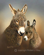 Limited Edition of 50 Donkey & Foal Head Study Prints by Robert J. May