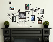 Family Photo Frames with Birds & Quotes Wall Art Vinyl Stickers, HIGH QUALITY
