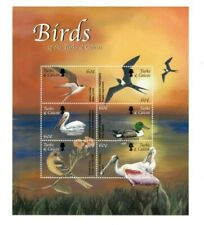 TURKS AND CAICOS  - Birds Of the Turks And Caicos - Sheet of 6 Stamps - MNH