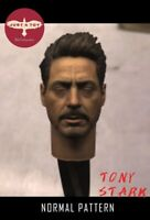 JUST A TOY 1/6 Iron Man Tony Head Carving Close Eyes  Male Head F 12'' Model Toy