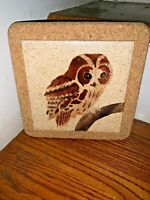 Hand Painted HOOT BARN OWL Precious & UNIQUE Trivet Cork Back 8x8 ❤️tw4j