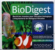Bio Digest 6 Amp. BioDigest Prodibio Bakterien Bakterienstämme 2,30€/St.
