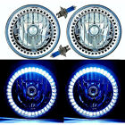 7 Halogen White Sc Led Halo Ring Angel Eye Headlight Headlamp Light Bulb Pair