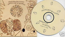 DEVENDRA BANHART Rejoicing In The Hands 2004 UK 16-track promo CD