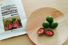 So Tasty! Matcha Chocolate coating Strawberry 50g×5pcs Japanese Food MUJI F/S