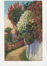 Menton Chemin Fleuri LL 168 France Vintage Postcard 348b