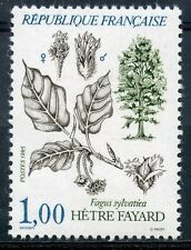 STAMP / TIMBRE FRANCE NEUF N° 2384 ** FLORE FAGUS SYLVATICA