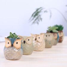 6x Garden Planter Ceramic Succulent Plant Pot Desk Flower Basket Home Office