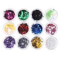 12 Mix Color Set Nail Art Glitter Powder Dust For UV GEL Acrylic Decoration Tips