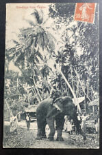1910s France RPPC Real Picture Postcard Cover Elephants Greetings From Ceylon