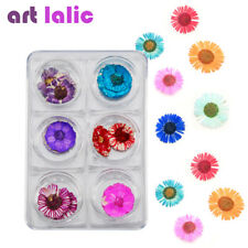 12Pcs 6 Colors Real Daisy Dried Flowers DIY Nail Art Tips Stickers Manicure Deco