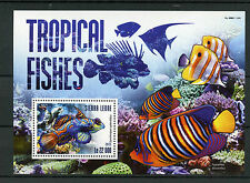 Sierra Leone 2015 MNH Tropical Fishes 1v S/S Fish Marine Stamps