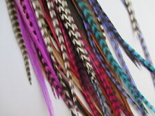 """real feather hair extensions ebay feathers for hair 6 mixed colours  10-14"""""""