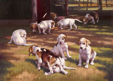 Fox Hound puppy, hunting dog fine art print by Neil Cawthorne.