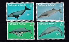 Mint Never Hinged/MNH Postage Falkland Island Stamps