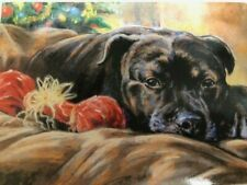 """STAFFORDSHIRE BULL TERRIER CHRISTMAS CARDS PACK OF 10 """"Staff Christmas"""""""