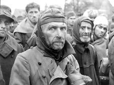 WWII B&W Photo German POW's After Capture Berlin 1945  / 2291  NEW