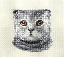 Scottish Fold chat, chaton, Chat tigré-COMPLET Counted Cross Stitch Kit + toutes les matières