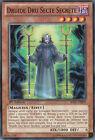 Druide Dru Secte Secrète -Spectres de l'Ombre- SHSP-FR009 -Carte Yu Gi Oh
