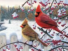 Needlepoint Canvas 14 or 18 count_ Cardinal Red Bird, Christmas