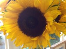 More details for flower - sunflower - giant single yellow - 50 seed - economy