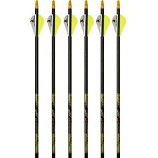 "Beman Arrows ICS Hunter Classic Carbon 6pk 400 Spine 226363 2"" Vanes #26363"
