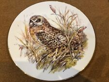 Royal Grafton 'short eared owl' plate from the Owl Collection