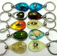 30pc lots wholesale  crab scorpion spider Green Beetle mix beades key-chains
