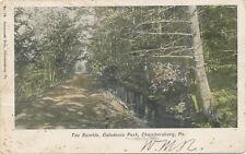 Chambersburg PA * The Ramble Caledonia Park 1907    Greenawalt Bros. #14