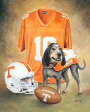 University of Tennessee Volunteers - Canvas 16x20 L.Ed.