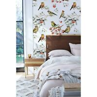 Removable wallpaper Forest Birds Animals Birds on Branches self adhesive art