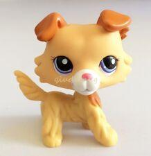 Littlest Pet Shop RARE Collie Dog Puppy Yellow Tan Brown White Blue Eyes #2452
