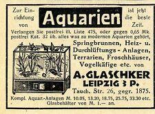 A. Glaschker Leipzig Aquarien Komplettanlagen Klassische Annonce 1929