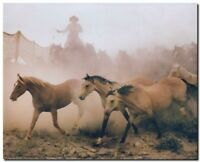 Western Horses Running in Herd Wild Animal wall décor Art Print Picture (8x10)