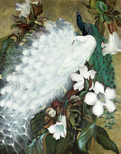 Animal Beautiful peacock Oil Painting Printed on canvas 16X20 inch L860