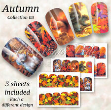 Autumn Nails, Nail Wraps Water Decals Leaves Squirrels Acorns Leaf Trees BN513