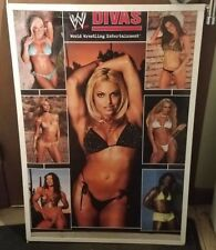 WWE DIVAS POSTER NEW 2004 VINTAGE COLLECTIBLE HOT MODEL GIRL SEXY WRESTLING