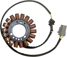 Ricks Electric Magneto Stator Buell 1125CR 2008