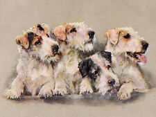 SEALYHAM TERRIER CHARMING DOG GREETINGS NOTE CARD GROUP OF FOUR DOGS