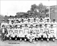 1935 Chicago Cubs Team Photo 8X10 - Hartnett Wrigley Field Buy Any 2 Get 1 FREE