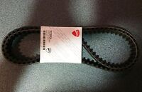 Ducati Monster 400 Cinghie Distribuzione - 73710051A - Ducati Toothed Belts