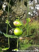 Hanging metal Frog on leaf hanging garden ornament decoration frog lover gift