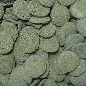 Algae Wafers with Spirulina and high contain of Protein for Plecos bottom fish