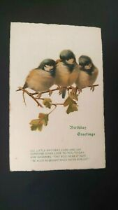 Blue Tits Birds Illustrated Birthday Postcard