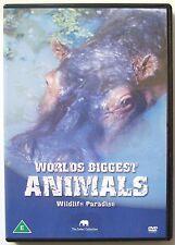 WORLD'S BIGGEST ANIMALS DVD MOVIE WILDLIFE PARADISE The Safari Collection