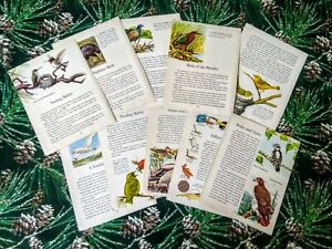 """Vintage Bird Ephemera for Arts and Crafts 10 Sheets GORGEOUS IMAGES 8"""""""