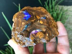 Sparkling Gem Nuggets. Rough Boulder Opal. 263 Grams
