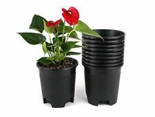 0.5 Gallon Nursery Pot Plastic Planters 10-Pack Plant Pots with Drainage Holes